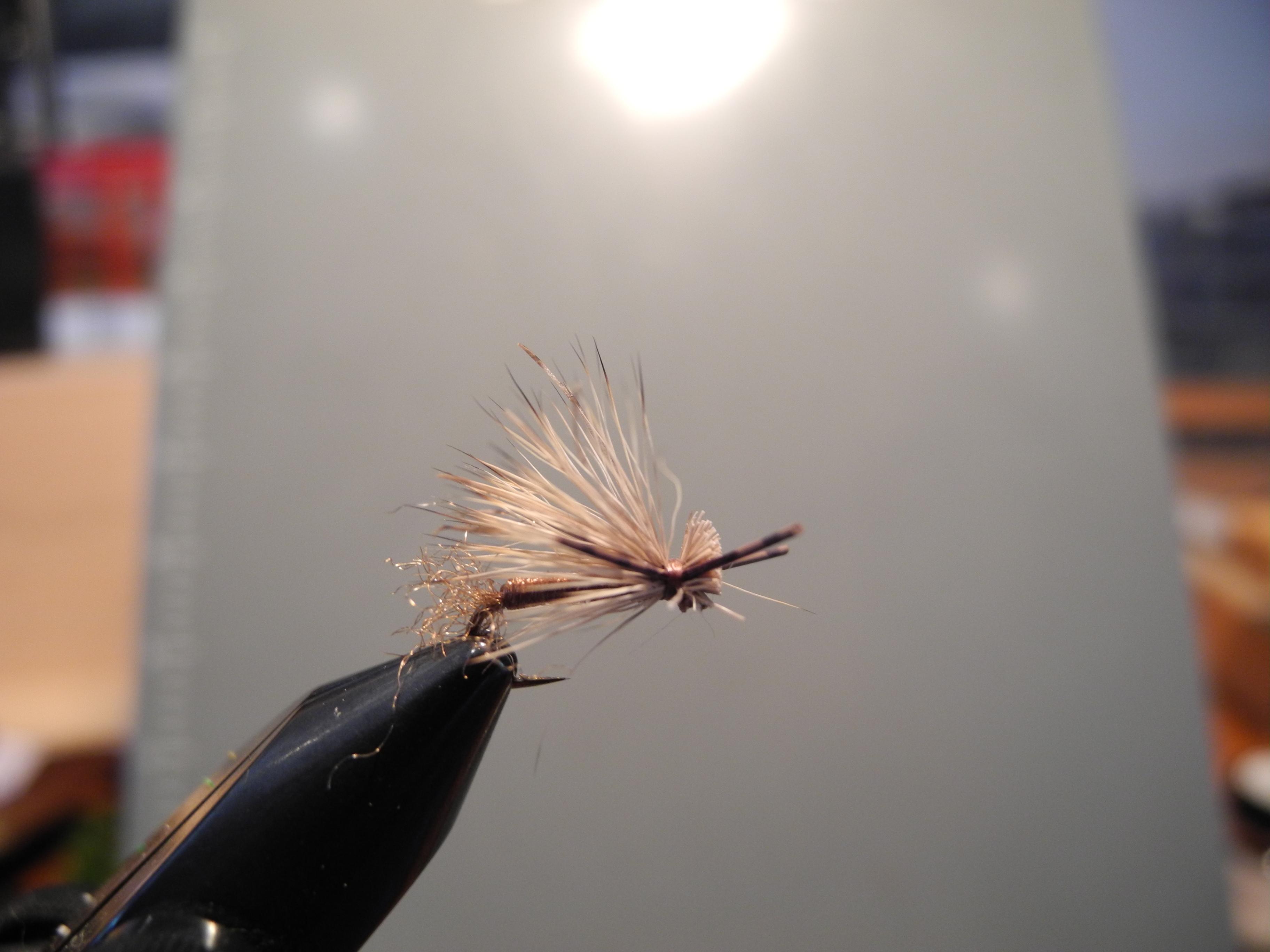 Deerfield river fishing report westfield river fishing for Deerfield river fly fishing